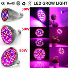 30W 50W 80W LED Grow Light Bulb E27 Full Specturm For Indoor Flowers Veg Plant