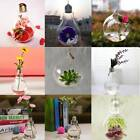 Light Bulb Shape Hanging Stand Glass Plant Vase Hydroponic Container Bottle Pot