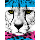 Contemporary Bold CMYK Cheetah Art Print Framed Poster Wall Decor