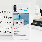 TPU Cat Scottish Fold Phone Case Silicone Cover For iPhone X 6/6s 7 8 Plus