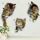 Au Animal Cats Bedroom Home Decor Removable Wall Stickers Decals Art Decoration