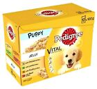 PEDIGREE PUPPY POUCHES 100g - (x3 - x48) - Junior Wet Dog Food PawMits bp Jelly