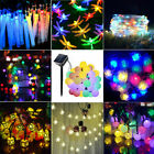 6/7/10/20m LED String Light Net Light Garden Sakura Rose Star Wire Cool/Warm/RGB