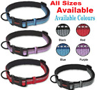 HALTI Premium Reflective Dog Collar Sizes X-Small, Small, Medium, Large.........