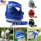 Small Medium Dog Nylon Mesh Harness Puppy Lead Leash Vest For Outdoor Walking US