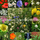 Ivisons 100% WILDFLOWER SEEDS NO GRASS SEED PURE MEADOW WILD FLOWER MIX 6