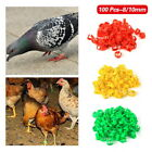 100 Pcs Numbered Poultry Leg Bands Bird Pigeon Duck Foot Ring Clip Parrot 8/10MM