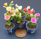 Handmade Dolls House Miniature Rose Flowers In A Pot