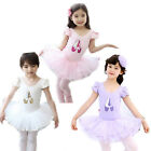 Girl Dancing Shoes Leotard Ballet Tutu Dress SZ 3-8Y