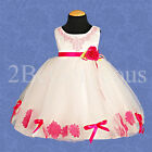 Baby Flower Girl Bridesmaid Communion Petals Dress Party Occasion Age 12M-4Y 064
