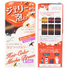 LUCIDO-L Japan Jewelry Bubble Foaming Hair Color Dying Kit