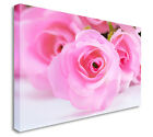 Pink Eternal Love Close Up Floral Canvas Wall Art Picture - Large+ Any Size