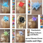 Fascinator Hair Clip Comb Flowers Feather Bead Wedding Prom Ascot 30 DESIGNS