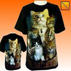 Ladies Womens Kitten Kittens Cat Cats Cute animal T Shirt Top NEW