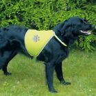 DOG REFLECTIVE / SECURITY VEST (Great value for safety)