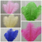 "12 pcs 10""-15"" long Genuine Ostrich Feathers for Wedding Party Centerpieces SALE"