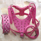 Hot Pink Leather Dog HARNESS COLLAR LEASH SET Spikes Studded PitBull Mastiff