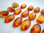 Cognac Baltic amber oval cabochon  16mm x 10mm hand cut natural best quality.