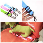 STOCK Durable Cat Dog Car Security Safety Leash Seat Belt Clip Restraint Harness