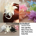 Fascinator Flower Headband Net and Feather Flowers Satin Aliceband MANY COLOURS