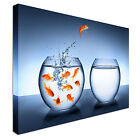 Goldfish jumping out of the water Canvas Art Cheap Wall Print Large Any Size