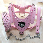 """New Leather Dog Harness Collar Leash SET Spikes Studs Pit Bull 26-34"""" chest size"""