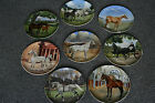 Spode collector plates Noble Horses By Susie Whitcombe  FULL SET of 8 Used