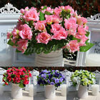 1x Bouquet Artificial Star Rose leaf Silk Flower Floral Home Wedding Party Decor