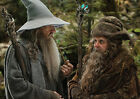 Gandalf and Radagast Lord of the RIngs HQ A3,A4 Print Poster