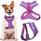 Vest Dog Harness Puppy Control Training Waterproof Padded S M Purple DO NO FEED