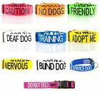 Strong Wide Semi Choke Dog Collar and Lead Sets Bull Terrier Mastiff Rottweiler
