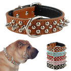 Spiked Studded Leather Dog Collar with Padded for Small Medium Breeds Terrier
