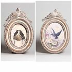 VINTAGE CHIC OVAL TURTLE DOVE WHITEWASH PHOTO FRAME  BY SASS & BELLE