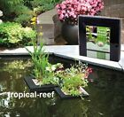 VELDA FLOATING PLANT ISLAND SQUARE GARDEN PLANTS PLANTER FISH POND BASKET FLOATS