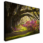 Secret Path in Flower forest Canvas wall Art prints high quality great value