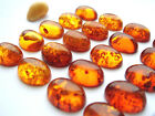 Cognac Baltic amber oval cabochon 16mm x 12mm hand cut natural best quality.