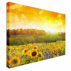 Sunflower Sunrise Canvas wall Art prints high quality great value