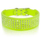 Unique Lime Green PU Leather Dog Collars 5 Rows Rhinestone Bling Diamond