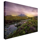 Green and Lavendar Field Canvas wall Art prints high quality great value