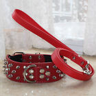 Studded Collar / Spiked Leather Dog Collar with Chain Lead / Leash for Pitbull