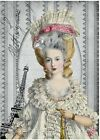 Marie Antoinette Attraction Crazy Quilt Block Multi Szs FrEE ShiP WoRld WiDE (M3