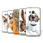 """STUFF4 Phone Case/Back Cover for Alcatel Pixi 4 (4"""") /Funny Animals"""