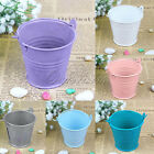 12X  Mini Metal Bucket Tin Candy Box Buckets Xmas Wedding Party Gift Decor Pails