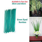 Young Plant Support Green Bamboo Flower Sticks Gardening Nursery Accessory