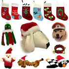Dog CHRISTMAS Gift Pet Xmas Stocking Toys Collar Santa Hat Squeaky Treat