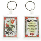 "NOVELTY NAME KEYRING PRINTED BOTH SIDES WITH ORIGIN & MEANING, LETTER ""N"" UK NEW"