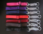 webbing dog collars