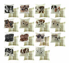Waggydogz Pupz, Puppy FILLED COMPLETE cushions with modern Boston check rever...