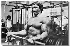 Arnold schwarzenegger Exercising Olympia Action Motivational Art wall Poster