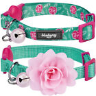 Blueberry Pet The Power of All in One Adjustable Breakaway Cat Collar